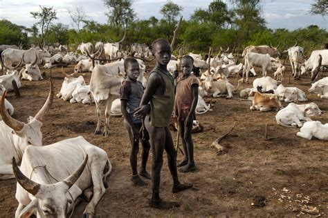 """South Sudan, """"A wild country grows in South Sudan"""" - Marco"""