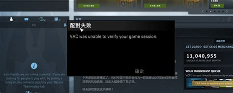 Cs Go Vac Was Unable To Verify Your Game Session - Berbagi