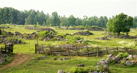 Discover camping in Småland - the province of lakes