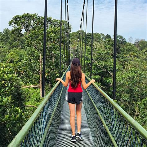 Where to Go in Singapore for Nature Lovers   WORLD OF