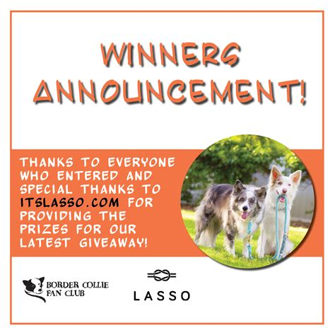 Announcing Our Lasso Giveaway Winners | Border Collie Fan Club