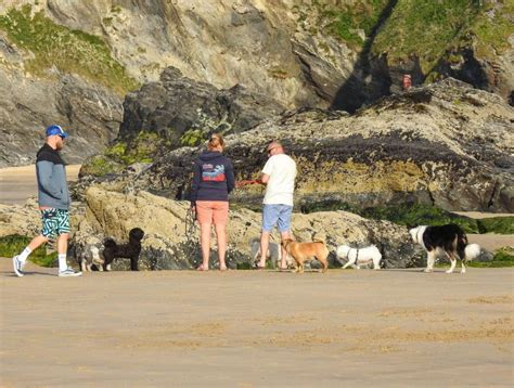 Newquay Cornwall Holidays On The Beach | GLOBAL GREY NOMADS